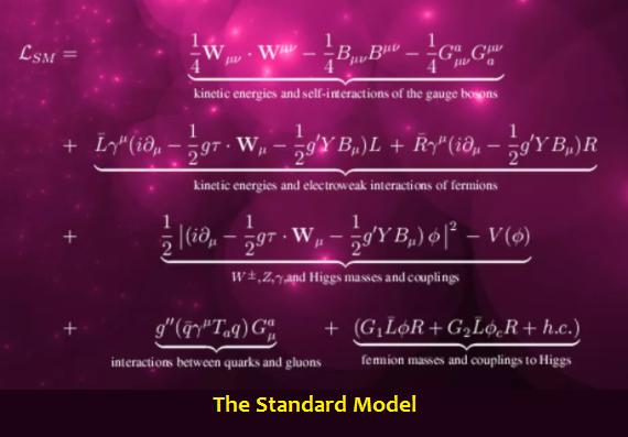 The Standard Model Equation