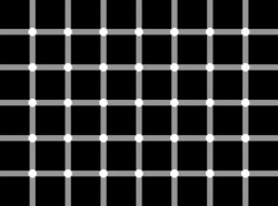 Blinking or non-blinking dots?